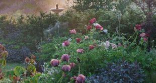 29 Romantischer Gartendekor für ein Budget