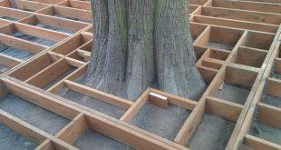 DIY - Backyard floating deck built around a tree. Framing around a cedar tree. #...