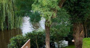Leitfaden für den Bau des perfekten Gartens – L & # 39; Essenziale